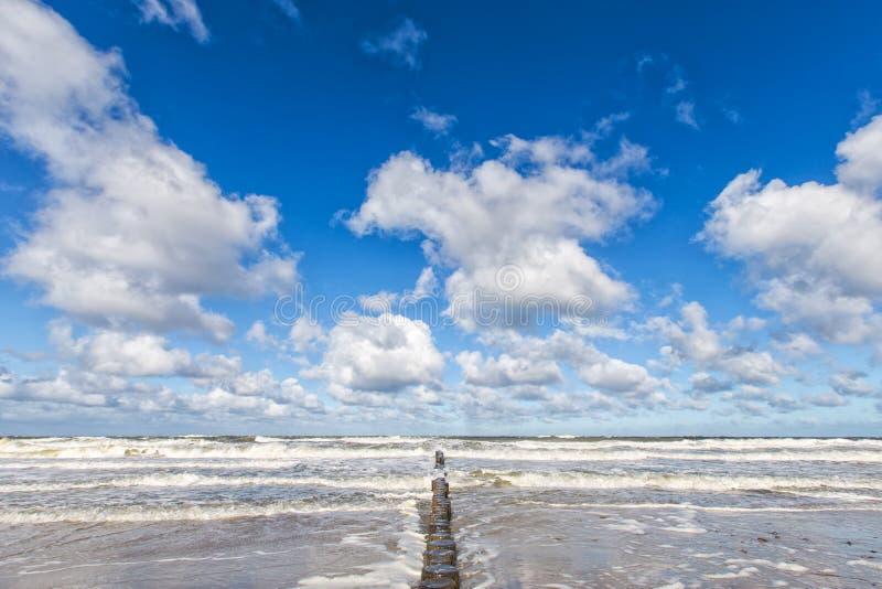 Costal groyns w morzu bałtyckim obraz stock