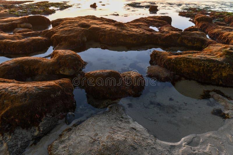 Costas de La Jolla - San Diego, Califórnia imagens de stock