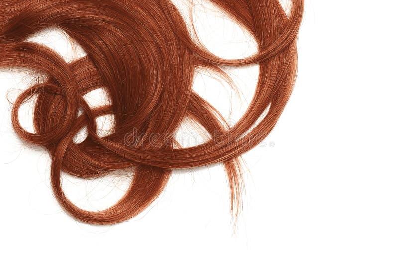 Costas de longo, torcidas, cabelo da hena isolado no fundo branco fotos de stock
