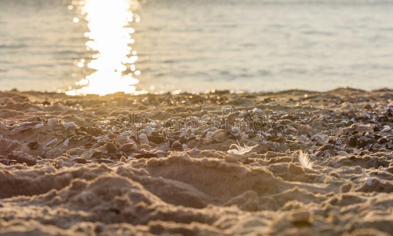 Costas del Mar del Norte imágenes de archivo libres de regalías