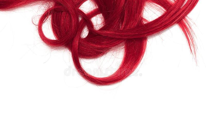 Costas do cabelo longo, torcido, cor-de-rosa isolado no fundo branco fotos de stock