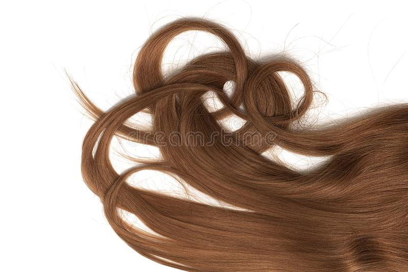 Costas do cabelo longo, torcido, marrom isolado no fundo branco imagem de stock