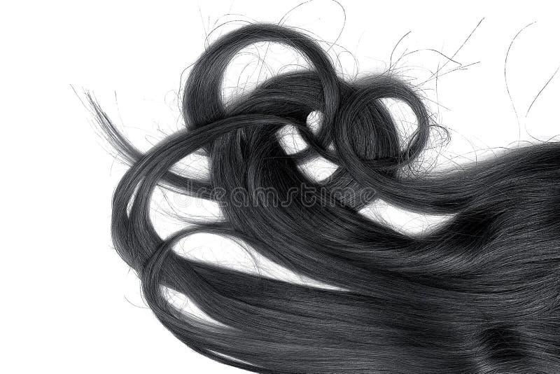 Costas do cabelo longo, torcido, preto isolado no fundo branco fotos de stock