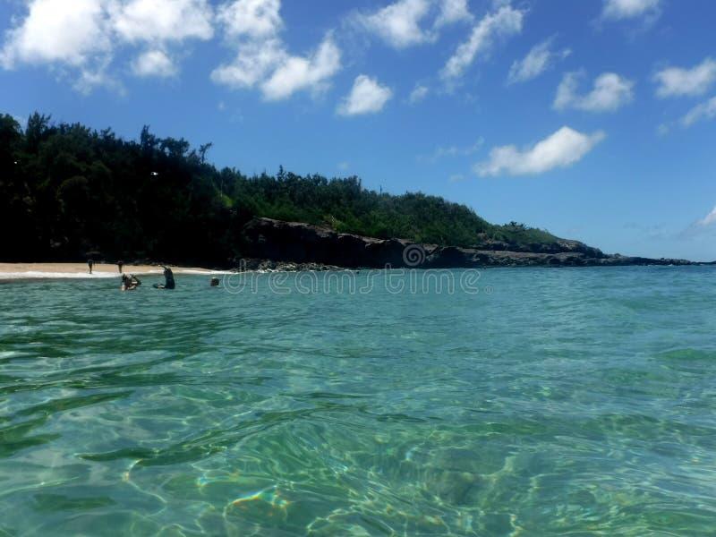 Costas do Hawaiian imagem de stock
