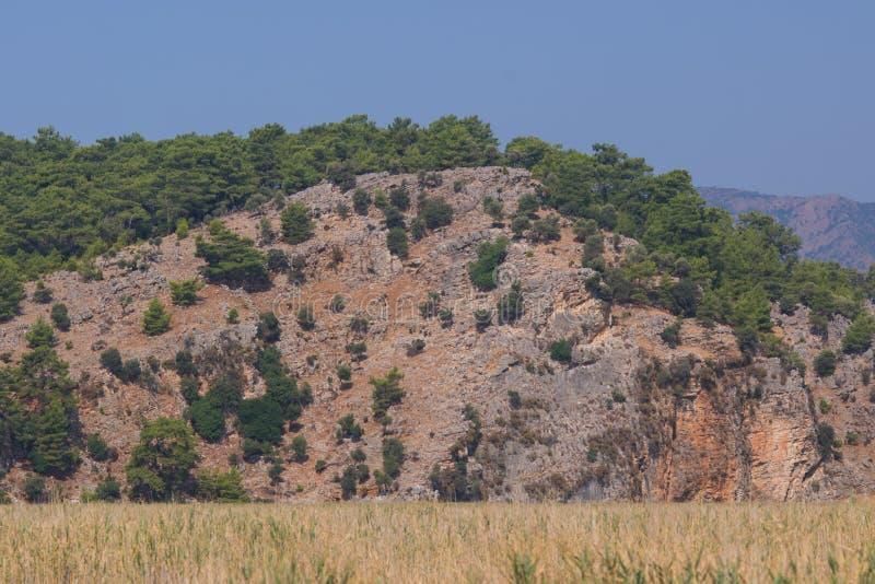 Costas rochosas do rio Dalyan em Turquia, foco seletivo imagem de stock