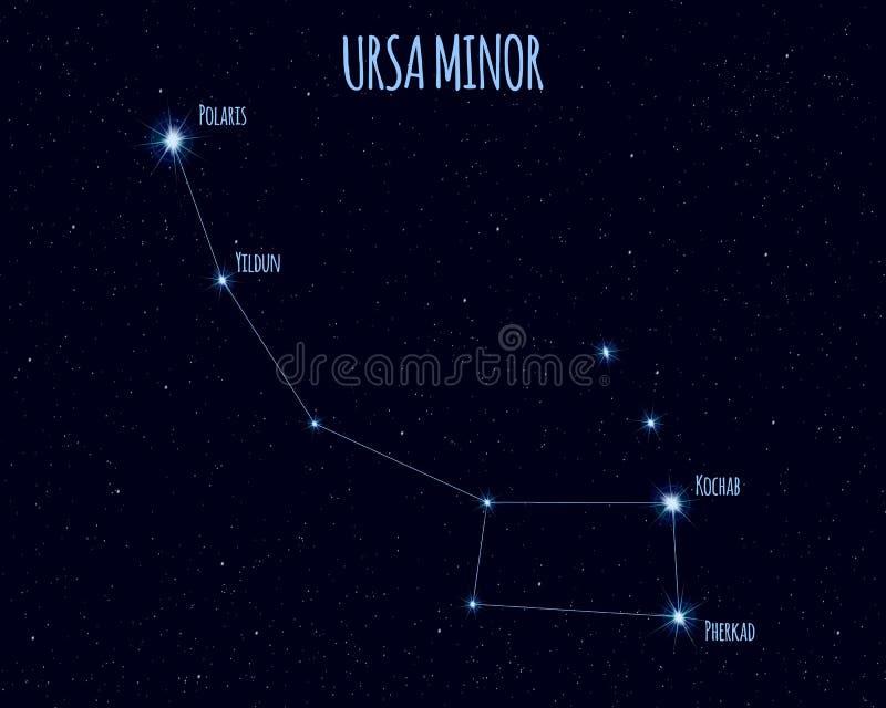 Costellazione di Ursa Minor, illustrazione di vettore con i nomi delle stelle di base illustrazione vettoriale
