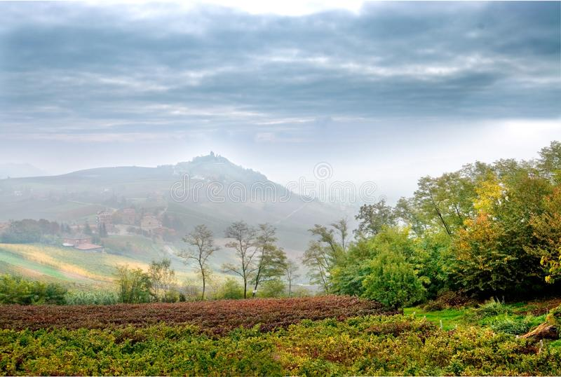 Costigliole d `阿斯蒂山麓意大利:藤和grap风景  图库摄影