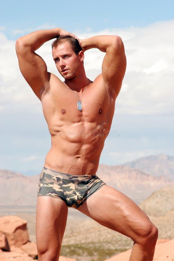 Costruttore di corpo sexy immagini stock libere da diritti