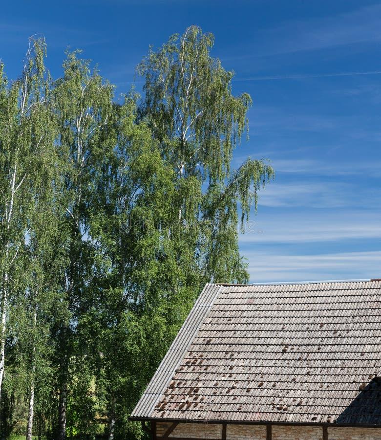 Costruzione con il tetto di mattonelle dell'argilla fotografia stock