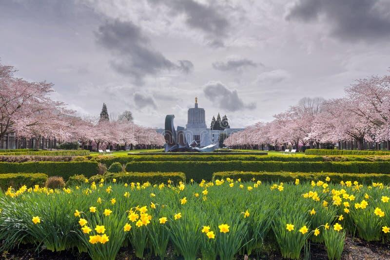 Costruzione del Campidoglio dello stato dell'Oregon con i fiori della primavera immagini stock libere da diritti