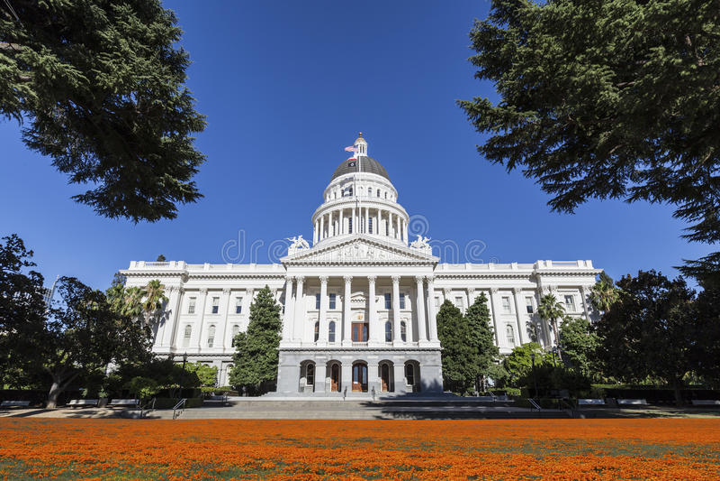 Costruzione del Campidoglio di California con i papaveri fotografia stock libera da diritti