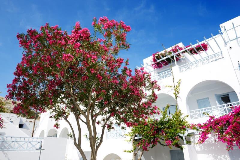 Costruzione dell 39 hotel nello stile greco tradizionale for Piccoli piani di costruzione dell hotel
