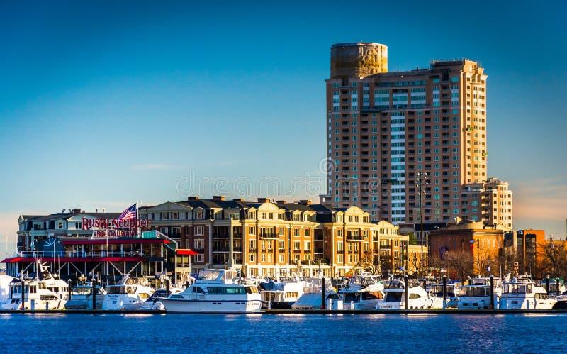 Costruzione di appartamento e porticciolo al porto interno a Baltimora, fotografie stock libere da diritti