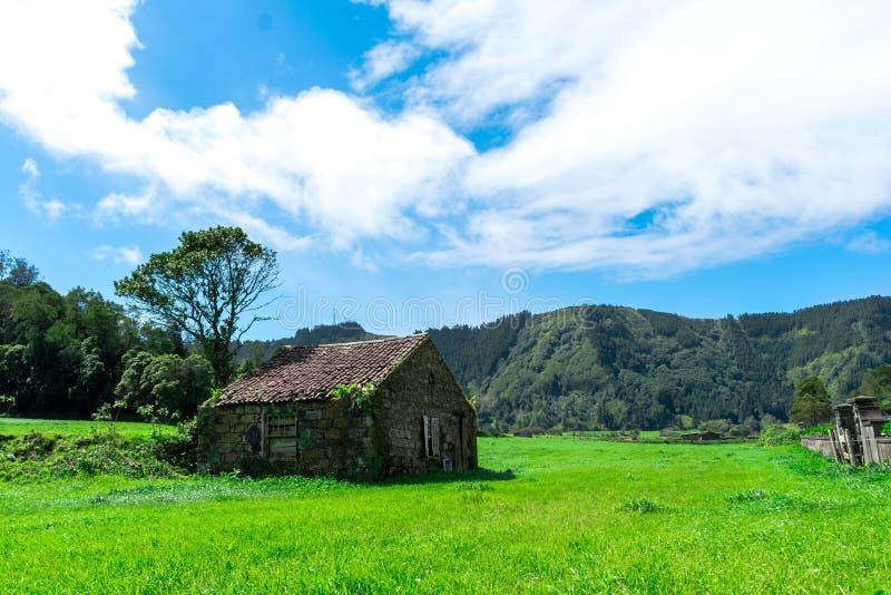 Costruzione di casa abbandonata dell'azienda agricola in mezzo alla foresta verde, sao Miguel, Azzorre, Portogallo fotografia stock libera da diritti