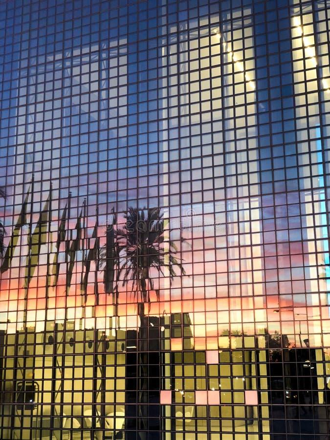 Costruzione moderna con le finestre di vetro e la riflessione della palma fotografia stock libera da diritti
