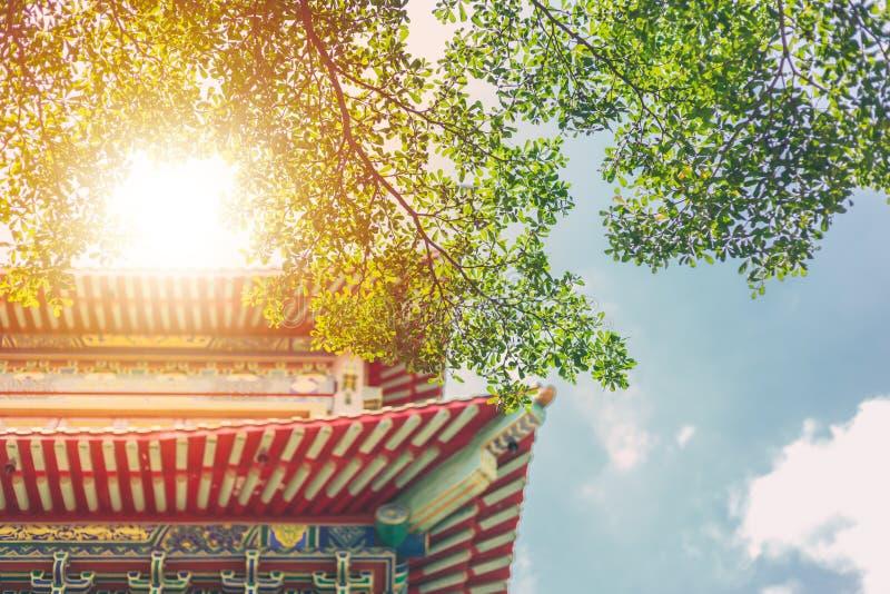 Costruzione tradizionale cinese con la natura verde dell'albero fotografia stock libera da diritti