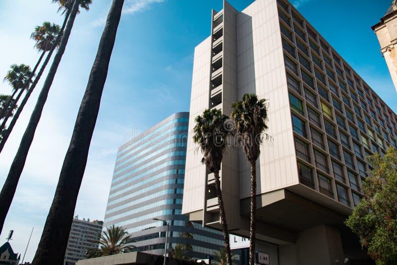 Costruzioni moderne con le palme fotografie stock libere da diritti