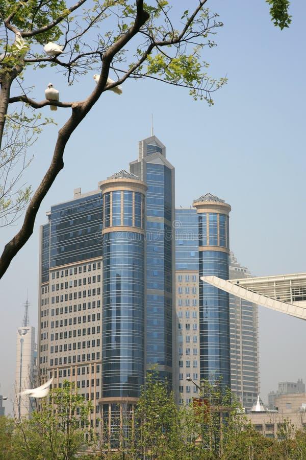Costruzioni moderne a Schang-Hai fotografia stock libera da diritti