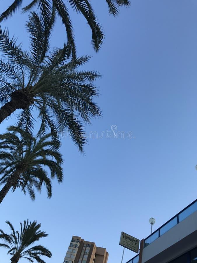 Costruzioni, spiaggia, estate, yacht in porto di Alicante fotografia stock