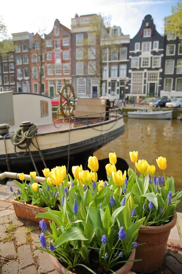 Costruzioni variopinte di eredità lungo il canale di Brouwersgracht a Amsterdam con i fiori variopinti e una casa galleggiante ne immagine stock libera da diritti