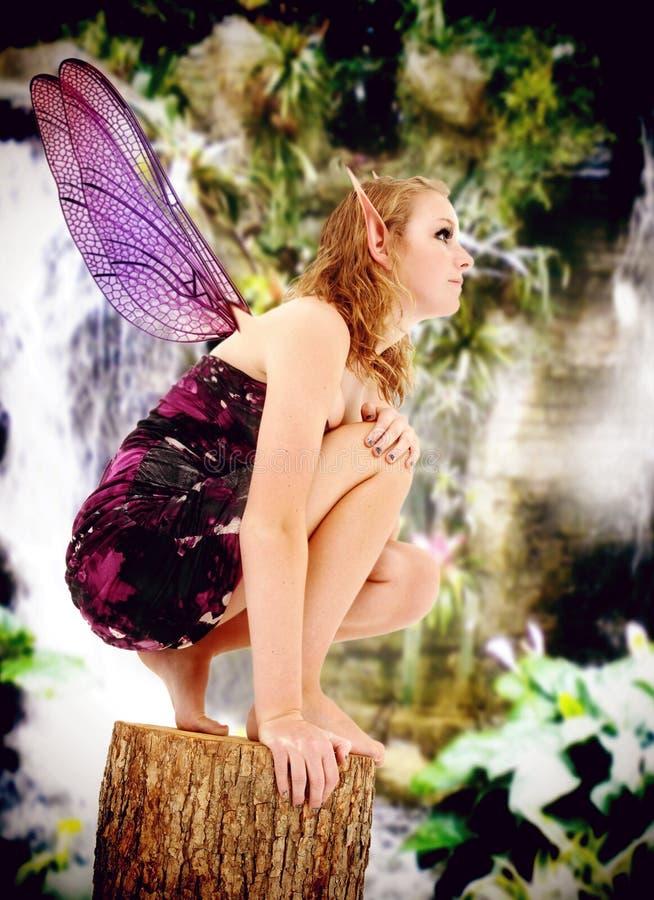 Costume teenager di Fairie del gioco di ruolo di azione in tensione immagine stock