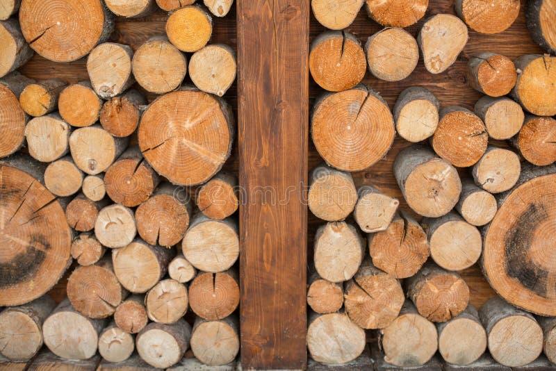 Cotoes de árvore imagem de stock