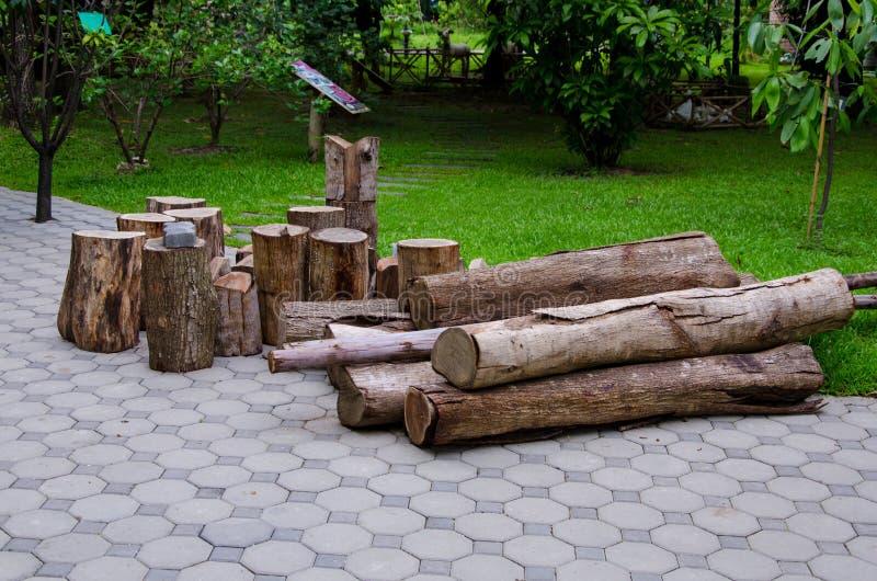 Cotoes de árvore e desflorestamento abatido da floresta imagem de stock