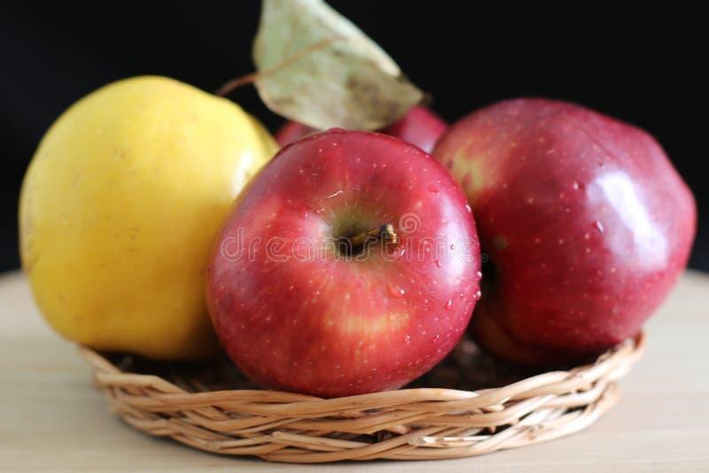Cotogna gialla e mele rosse immagine stock