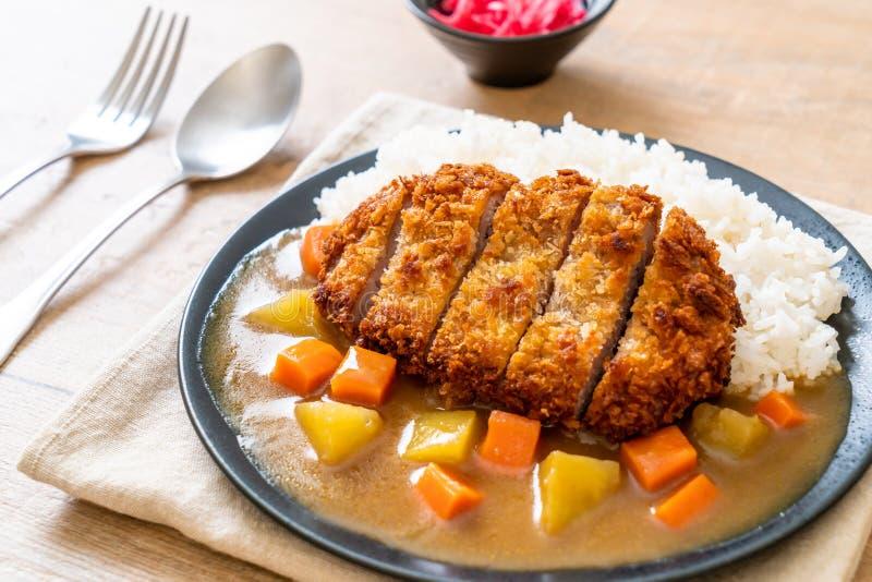 Cotoletta fritta croccante della carne di maiale con curry e riso fotografia stock libera da diritti