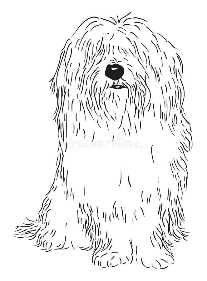 Coton DE Tulear vector illustratie