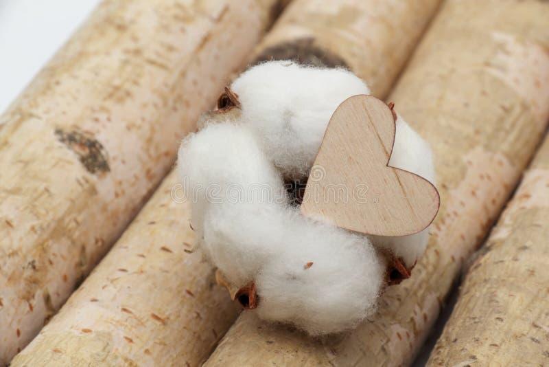 Cotone e cuore di legno fotografia stock