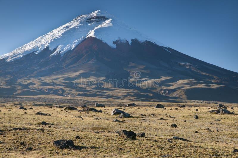 Cotopaxi-Vulkan in Ecuador lizenzfreie stockbilder
