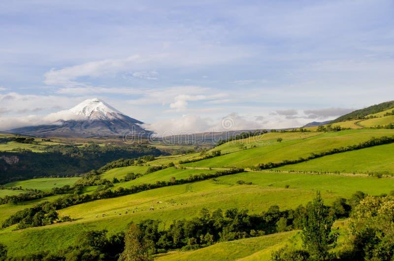 Cotopaxivulkaan, Ecuador. royalty-vrije stock afbeeldingen