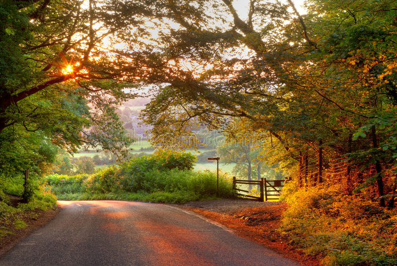 Cotswold lane at sunset. Wooded English country lane at sunset, Mickleton near Chipping Campden, Gloucestershire, England royalty free stock photo