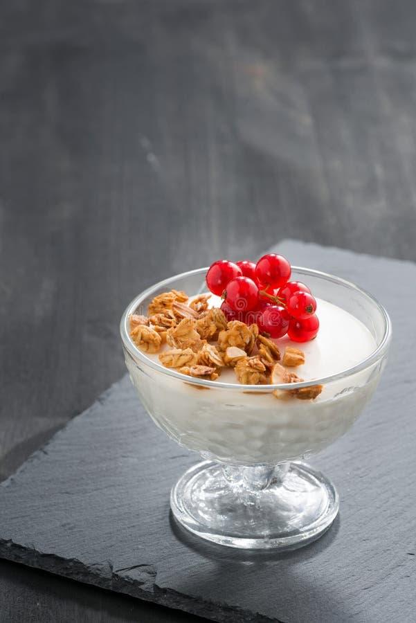 Cotta crémeux de panna avec la granola et les groseilles rouges images stock