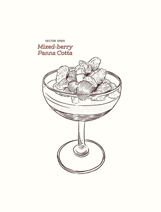 Cotta de Panna con las bayas mezcladas frescas en un vidrio, desser italiano stock de ilustración