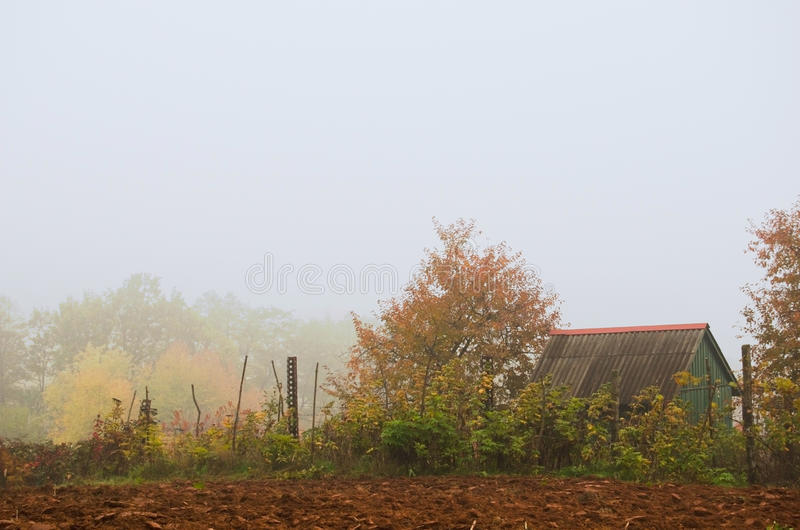 Cottage in autumn forest wrapped in mist. royalty free stock image