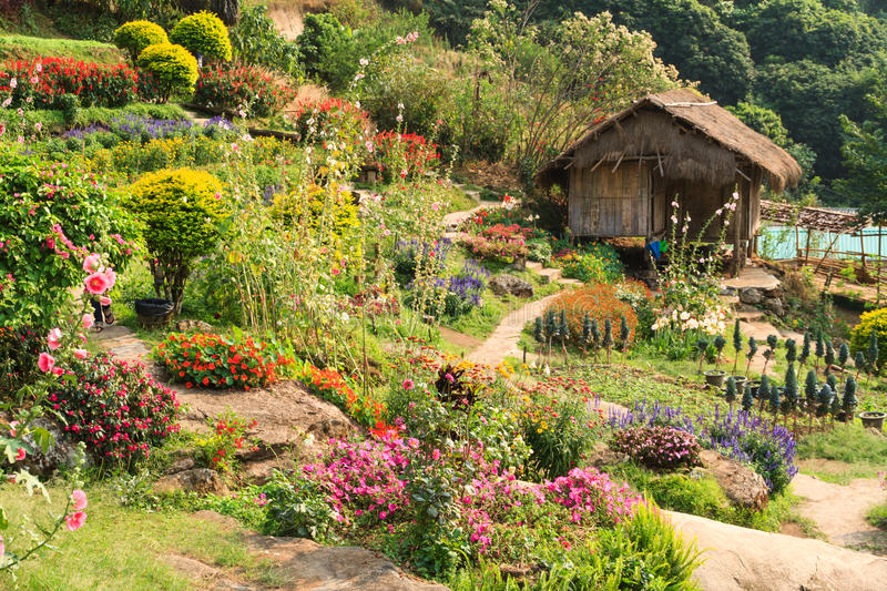 Cottage bamboo and flower garden. At north of thailand royalty free stock photos