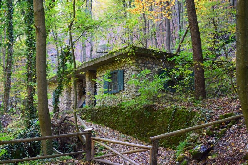 Cottage caché dans la forêt photographie stock libre de droits