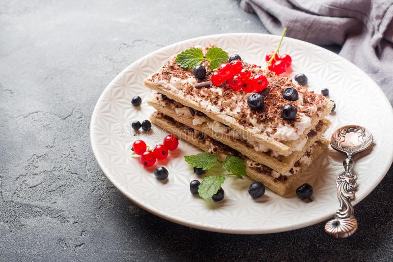 Cottage cheese dessert of crispy dietary bread, curd and blueberries with red currants. Selective focus. Cottage cheese dessert of crispy dietary bread, curd and royalty free stock photography