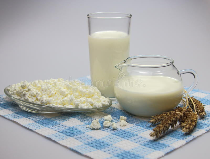 Cottage cheese and milk with ears of wheat ,dairy product royalty free stock photography