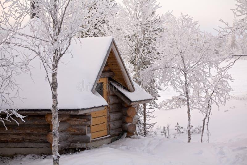 Cottage della foresta fotografia stock
