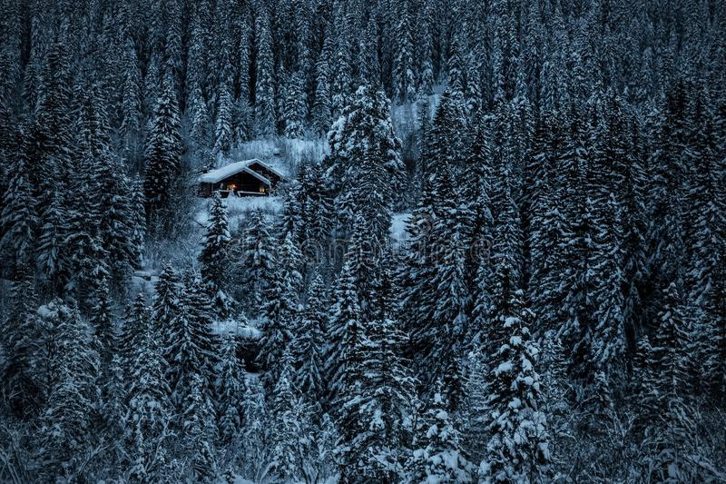 Cottage en bois en bois noregian d'hiver Région de Trondheim image libre de droits