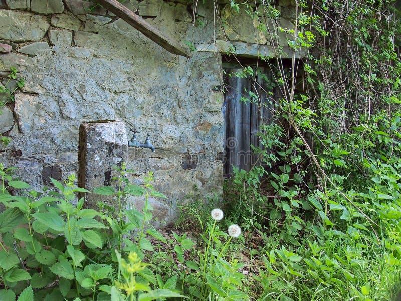 Cottage en pierre abandonné, envahi avec des mauvaises herbes, la Grèce photo libre de droits