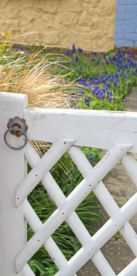Cottage garden lattice gate royalty free stock images