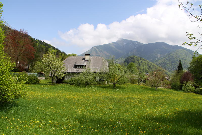 Download Cottage in the hayfield stock image. Image of salzburg - 35324391