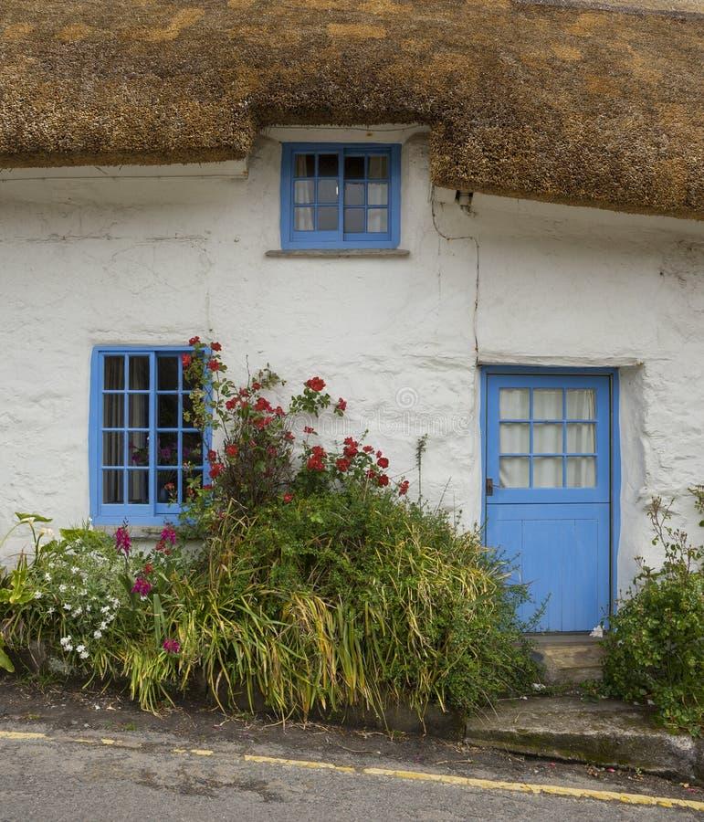 Cottage imbiancato e di pietra con il tetto ricoperto di paglia, Cadgwith, Cornovaglia, Inghilterra immagini stock libere da diritti