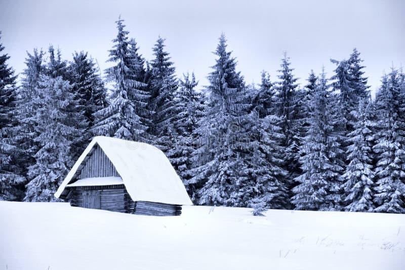 Cottage innevato fotografia stock libera da diritti