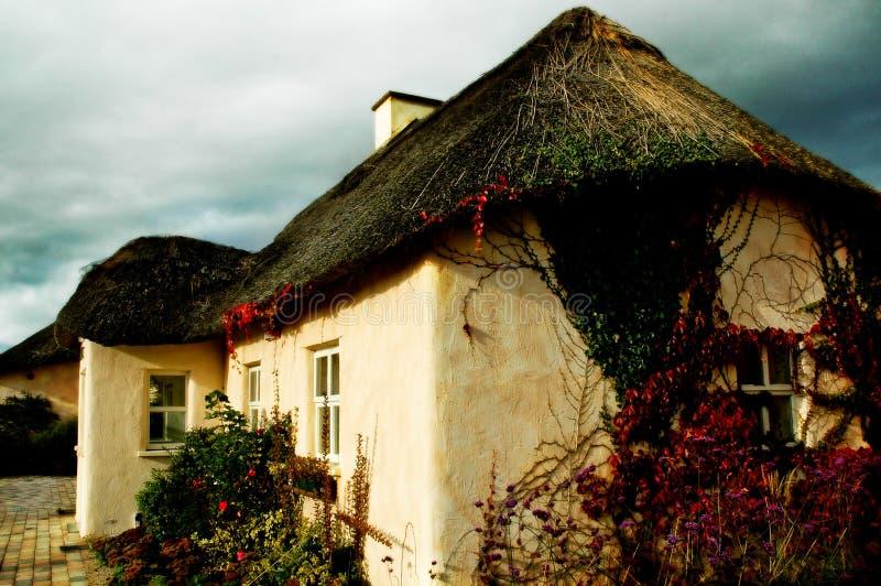 Cottage irlandese a Waterford immagine stock libera da diritti