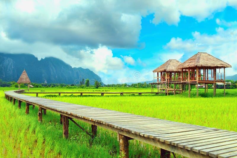 Cottage in mezzo al giacimento del riso fotografie stock libere da diritti